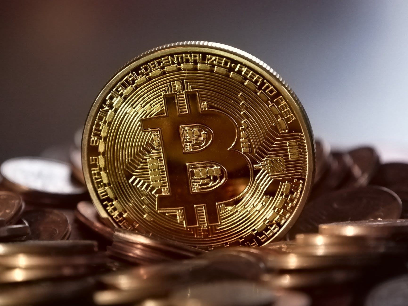 The 10 Best Bitcoin and Crypto Wallets